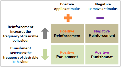 skinners operant conditioning theory essay An essay or paper on bf skinner theory of behaviorism bf skinner is a name associated with behaviorism, a term referring to a form of conditioning theory such as was developed by.